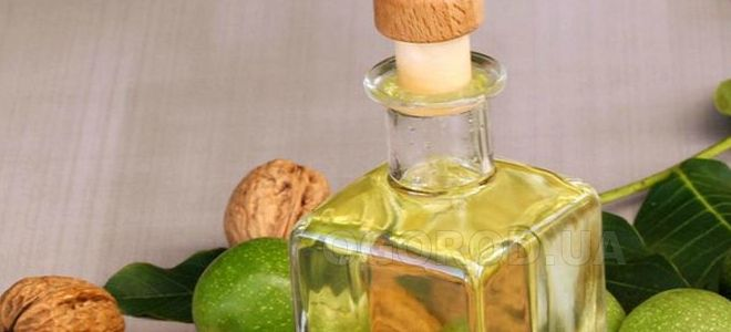 масло грецкого ореха полезные свойства и применение