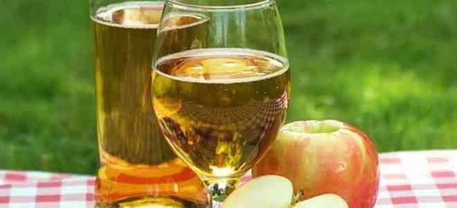 вино из яблок без сахара и дрожжей