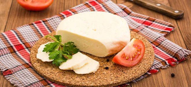 адыгейский сыр из молока и сыворотки