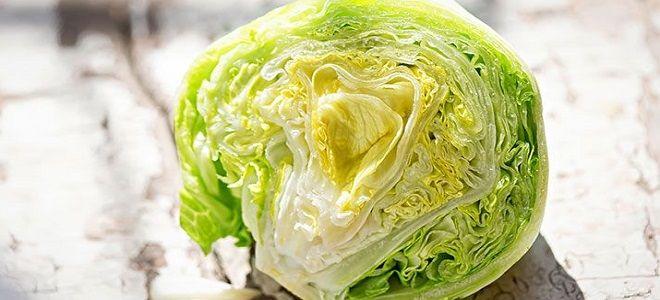 салат айсберг польза и вред
