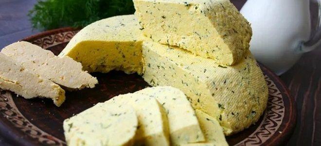 домашний сыр из творога и сметаны