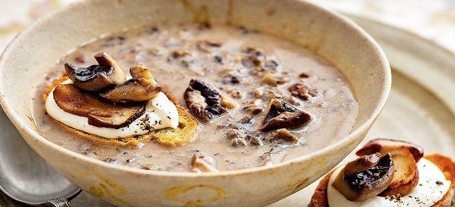 самый вкусный грибной суп из замороженных грибов