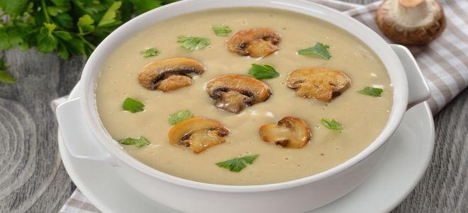 суп пюре из шампиньонов с курицей