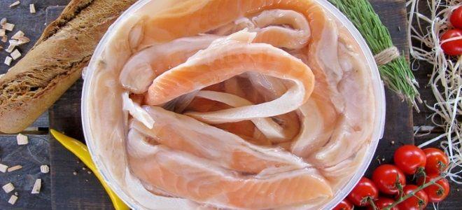 как засолить брюшки семги
