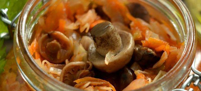 солянка из груздей с капустой на зиму