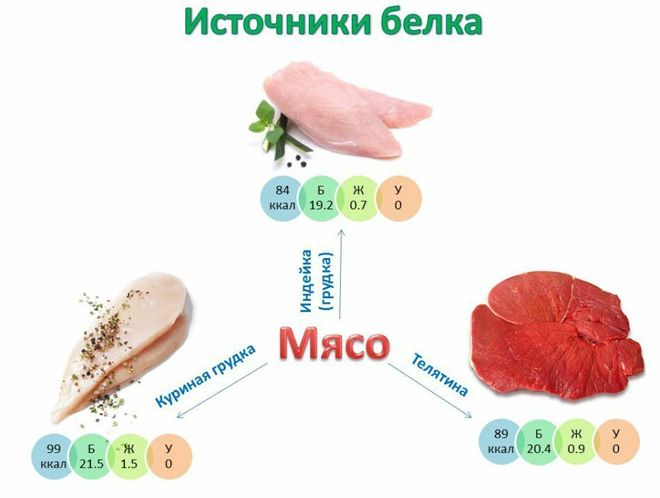 белок в мясе