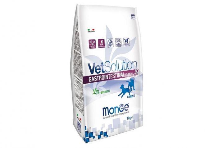 Какой корм для собак лучше сухой или влажный