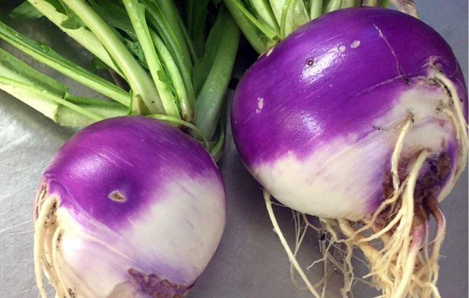 турнепс фиолетовый