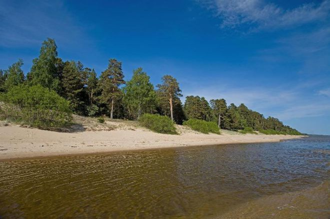 Северное побережье Чудского озера