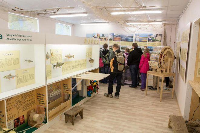 Выставка Комната жизни Чудского озера