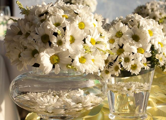 Шестидесятых, ромашковая свадьба картинки прикольные