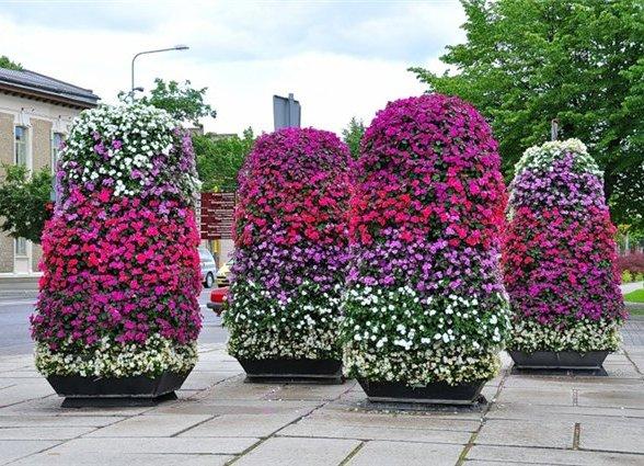 Клумбы для цветов своими руками фото 780