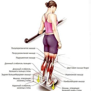 Как похудеть в ногах не накачав мышцы