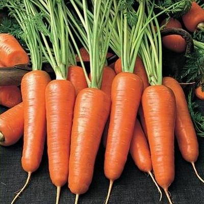 Калорийность моркови на 100 грамм, сколько калорий и БЖУ в сырой морковке