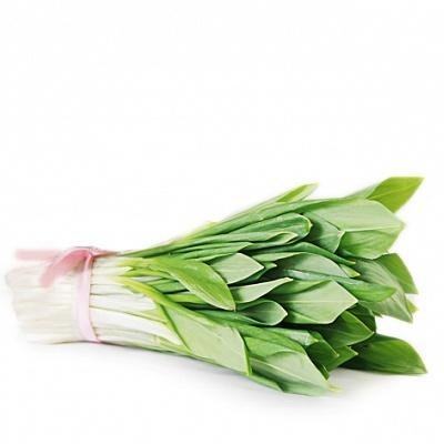 Растение колба - первые весенние витамины. Как вырастить колбу