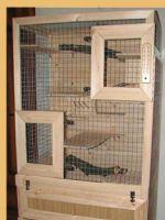 Клетка для шиншиллы своими руками в домашних условиях фото 800