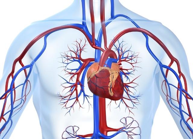 Хроническая сердечная недостаточность жалобы на -
