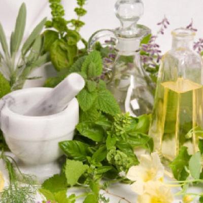 какие травы помогают от аллергии на коже