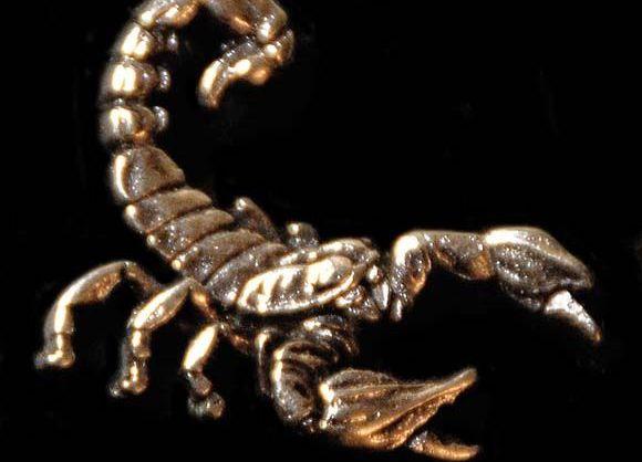 Фото камней скорпиона