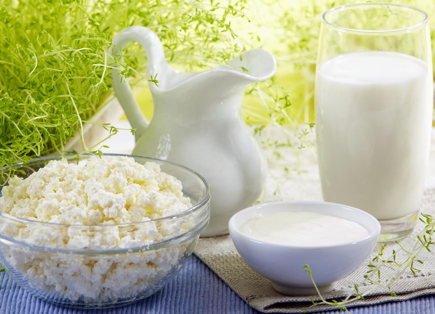 Какой кисломолочный продукт самый полезный? Сказ о лучших