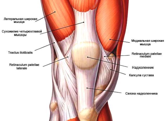 Симптомы и лечение растяжения связок коленного сустава