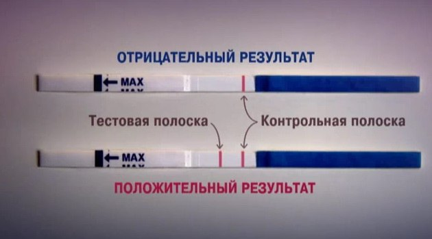 Правильное использование теста на беременность