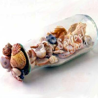 Что сделать из морских ракушек своими руками