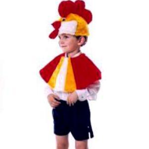 Как сделать костюм петуха в домашних фото 129