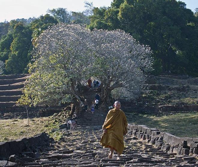 Ступени к главному святилищу Ват-Пху