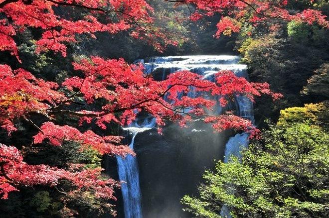 Удивительная природа около водопада