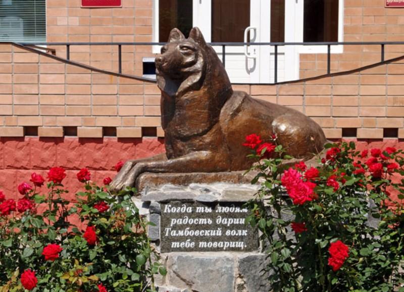 огромными трудностями тамбовский волк памятник фото развитием